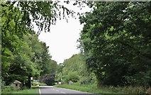 SU6327 : The A272 east of Bramdean by David Howard
