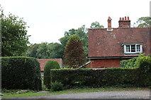 SU6227 : Cottage on Petersfield Road, Bramdean by David Howard
