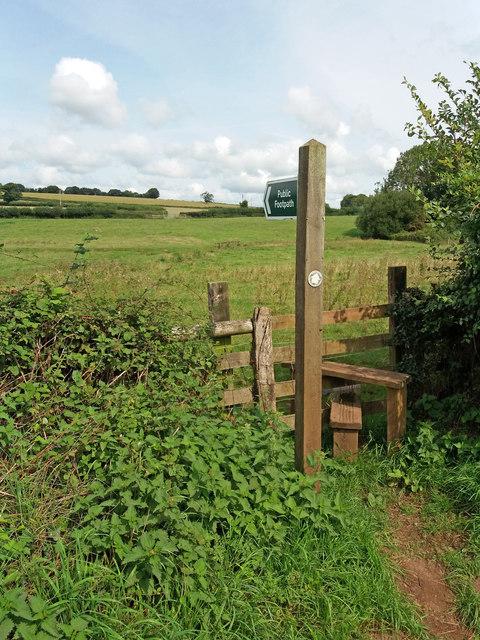 Cullompton: footpath to Ponsford Lane