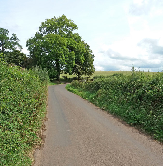 Cullompton: Ponsford Lane