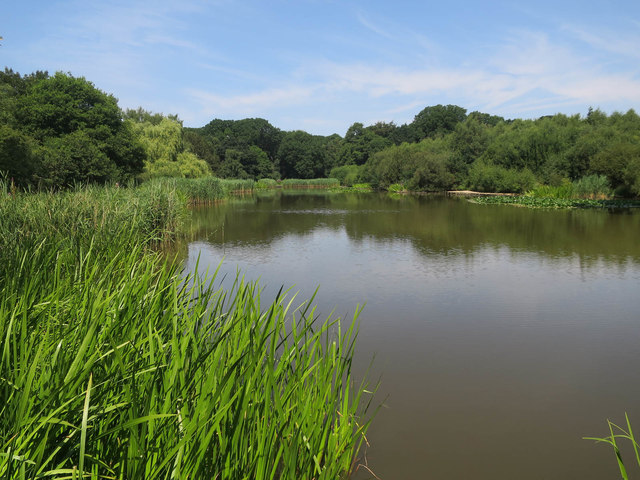 The Lake, Southampton Common