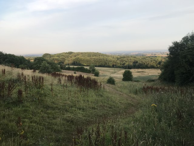 Bateswood from Alsagers Bank