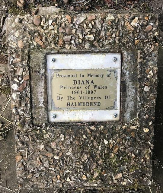 Memorial plaque beneath rowan sapling