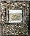 SJ8048 : Memorial plaque beneath rowan sapling by Jonathan Hutchins