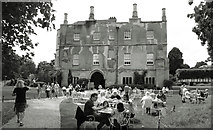 SU3226 : Tea Time at Mottisfont Abbey by Des Blenkinsopp