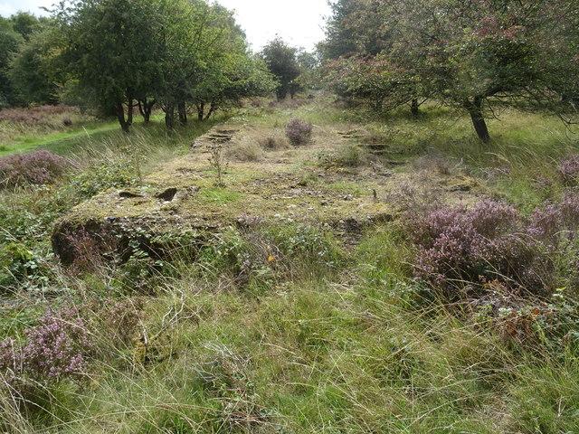 Rugeley (Penkridge Bank) Camp 'Line 3' - Shower Block (looking S)
