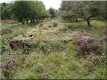 SK0017 : Rugeley (Penkridge Bank) Camp 'Line 3' - Shower Block (looking S) by John M