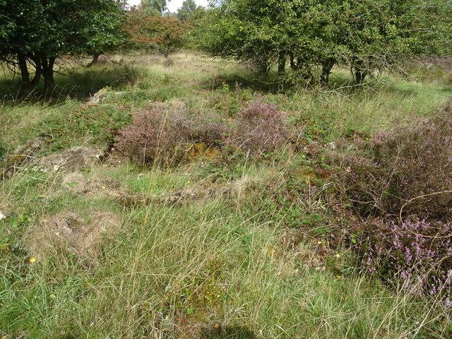 Rugeley (Penkridge Bank) Camp 'Line 3' - Shower Block (looking N)