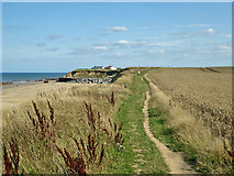 TG3930 : Coastal path towards Eccles-on-Sea by Robin Webster