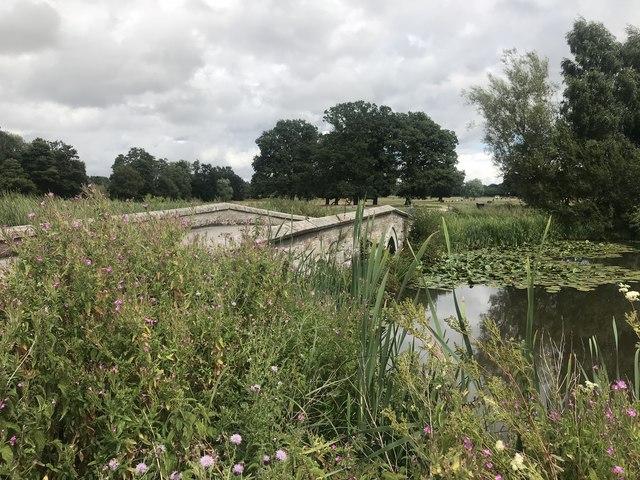 Pond and bridge in Cholmondeley Park