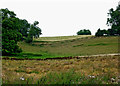 SP6687 : Farmland south-east of Laughton in Leicestershire by Roger  Kidd