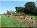 TM2844 : Waldringfield: felled trees at the former vicarage by John Sutton