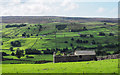 SD9998 : Ruined building on northern slope of Swaledale by Trevor Littlewood