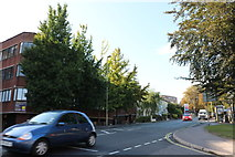 SU4730 : Andover Road at the end of Worthy Lane by David Howard