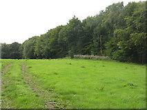 NT6378 : Hedderwick Hill by M J Richardson