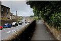 SE1228 : On Witchfield Hill, Shelf by Chris Heaton