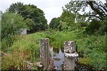 S2134 : Clashawley River by N Chadwick