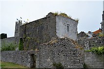 S2034 : Fethard town walls by N Chadwick