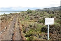 NJ0664 : Coast path, Findhorn by Richard Webb