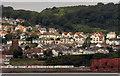 SX8961 : Preston from Tor Bay : Week 35