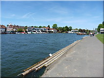 SU7682 : The Thames Path National Trail near Henley-on-Thames by Dave Kelly