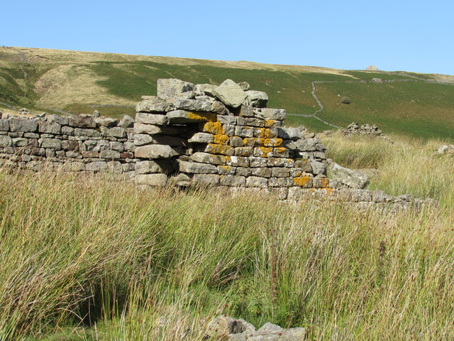 Ruins of Unnamed Barn nr Lodge