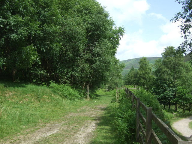 Track into woodland above Howden Reservoir