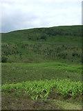SK1695 : View towards Mosley Bank by JThomas