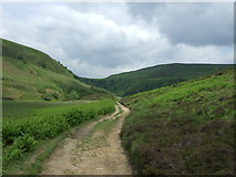 SK1695 : Track (path) above the River Derwent by JThomas