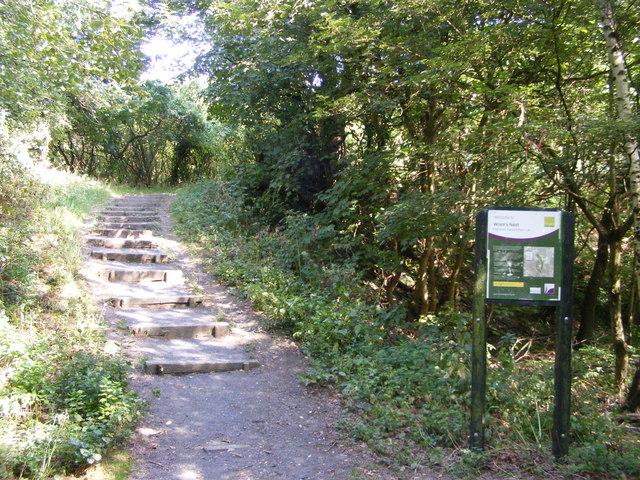 Wrens Nest Steps
