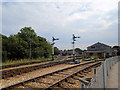 SZ5589 : Signals at Havenstreet station by Paul Gillett