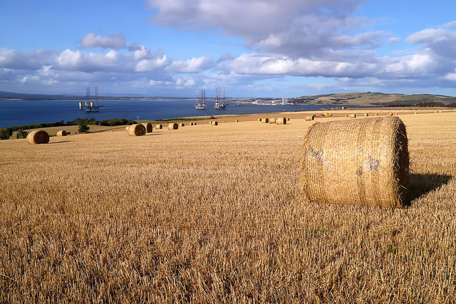 Round bales at Greenhill