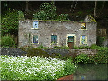 SK3155 : Derelict cottage near the Cromford Canal by Chris Gunns