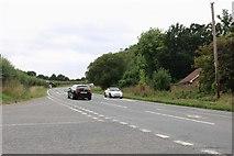 SU9321 : Junction on the A272, Halfway Bridge by David Howard