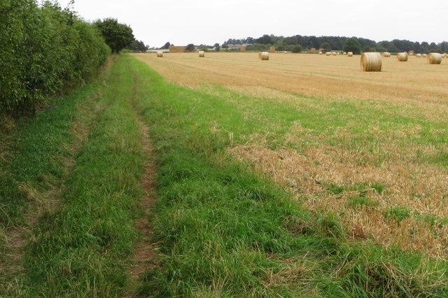 Bridleway towards Walltree Farm