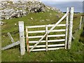 NB1438 : This is the wrong gate! by Oliver Dixon