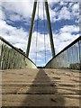 NZ2841 : Footbridge across the river Wear at Maiden Castle : Week 36