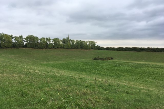 Field that used to be a pit