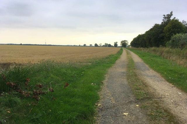 Track to Spendelows Farm