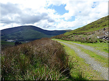 SH6906 : Forestry road back to Cwm Gwernol by John Lucas