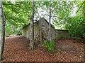 NH6568 : Teaninich Walled Garden by valenta