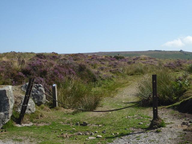 Dartmoor near Warren House