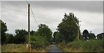 N1563 : Currycreghan by N Chadwick