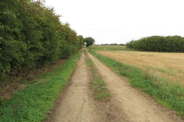 Track towards Hinton Grounds Farm