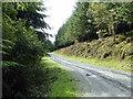 SH7708 : Forest road by Moel Heulen by John Lucas