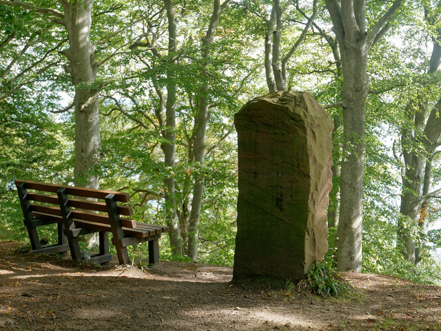 Millennium Stone in Craig Wood