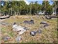 SK2773 : Stones on Gardom's Edge by Graham Hogg