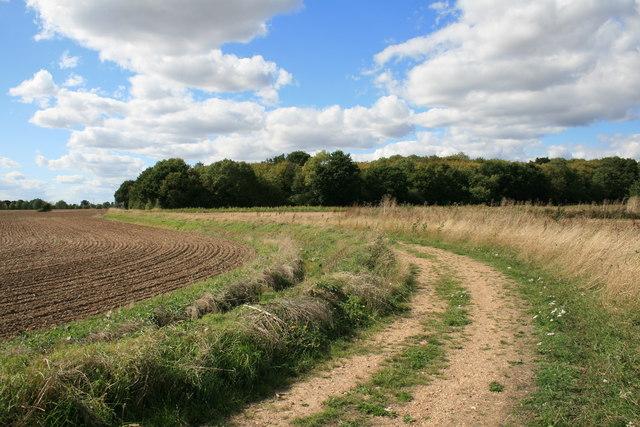 Farm Track and Brakey Wood
