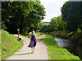 SX0048 : Paths along the River Austell by Gary Rogers