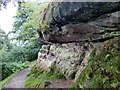SJ8577 : Rock outcrop on Alderley Edge by Graham Hogg